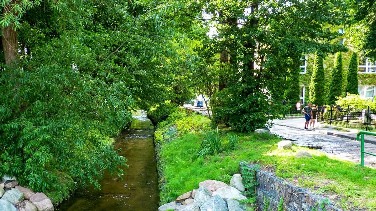 Kacza stream in Orłowo, Gdynia