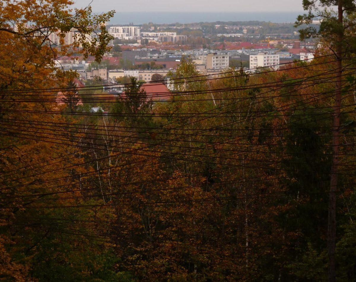 Golden Polish Autumn - Jaskowa Dolina Valley Park, Gdansk