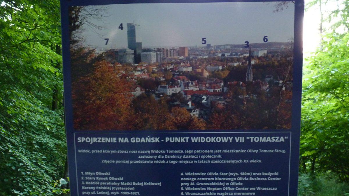 Punkt widokowy Spojrzenie na Gdańsk, Widok Tomasza